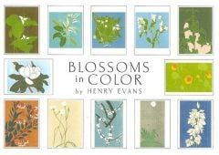 Blossoms in Color (Boxed Notecards)
