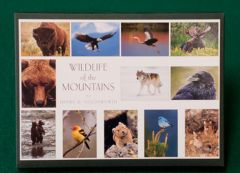 Wildlife of the Mountains (Boxed Notecards)
