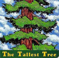 The Tallest Tree (Board Book)
