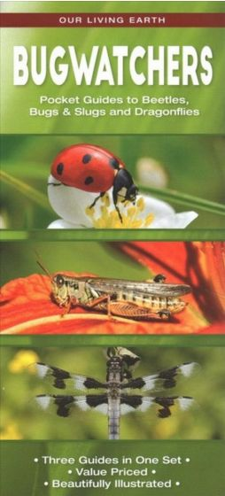 Bugwatchers: Folding Pocket Guides to Beetles, Bugs & Slugs, and Dragonflies (Our Living Earth® Series)