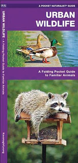 Urban Wildlife (Pocket Naturalist® Guide).