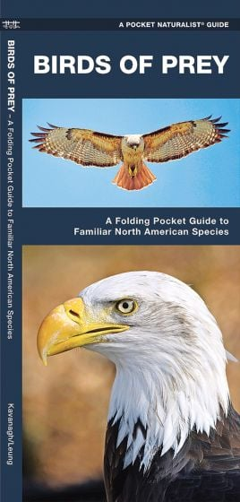 Birds Of Prey (Pocket Naturalist® Guide).