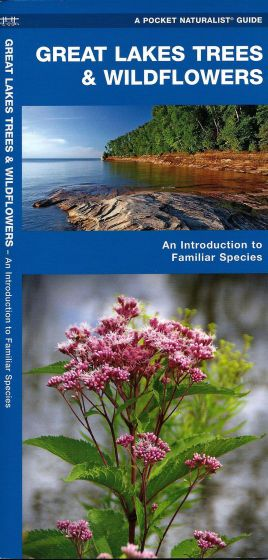 Great Lakes Trees & Wildflowers (Pocket Naturalistֳ'ֲ® Guide).