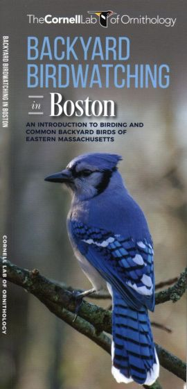 Backyard Birdwatching in Boston (All About Birds Pocket Guide®)