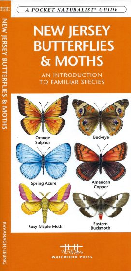 New Jersey Butterflies & Moths (Pocket Naturalistֳ'ֲ® Guide)