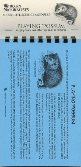 Playing 'Possum (Urban Life Science Module®)