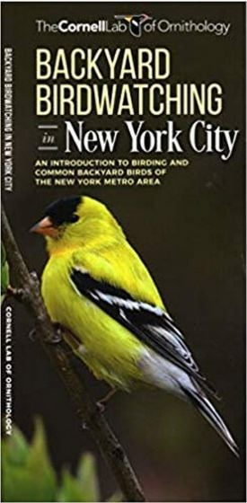 Backyard Birdwatching in New York City (All About Birds Pocket Guide®)