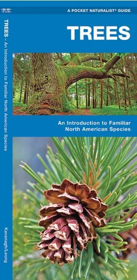 Trees (Pocket Naturalist® Guide).