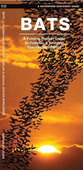 Bats (Waterford Discovery® Guide)