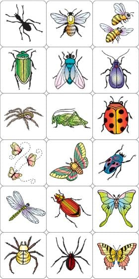 Insects And Spiders Stamping Kit