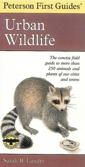 Urban Wildlife (Peterson First Guide)