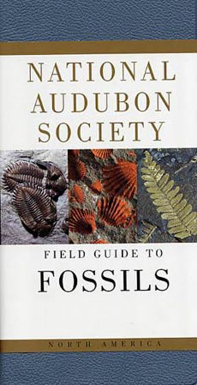 Fossils (National Audubon Society Field Guide)