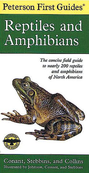 Reptiles And Amphibians (Peterson First Guide)