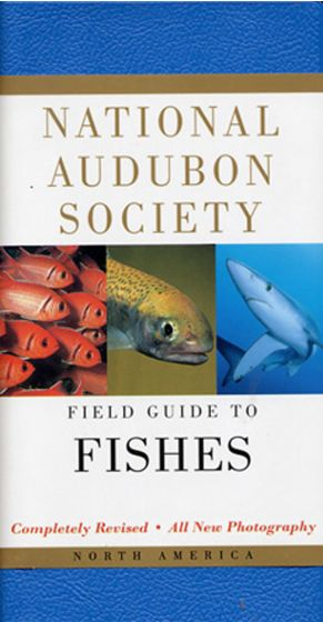 Fishes (National Audubon Society Field Guide)