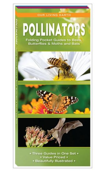 Pollinators: Folding Pocket Guides to Bats, Bees, Butterflies & Moths (Our Living Earth® Series)