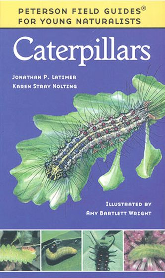Caterpillars (Peterson Field Guide For Young Naturalists)