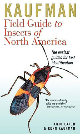 Kaufman Field Guide To The Insects Of North America