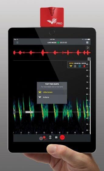 Echo Meter Touch 2 Pro®: Ultrasonic Bat Detector/Recorder/Analyzer