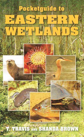Pocket Guide To Eastern Wetlands