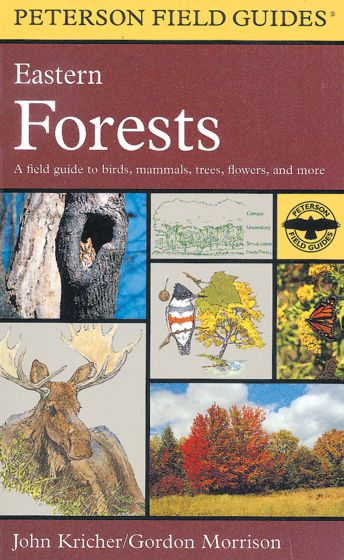 Eastern Forests (Peterson Field Guide)