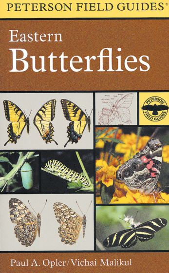 Eastern Butterflies (Peterson Field Guide)