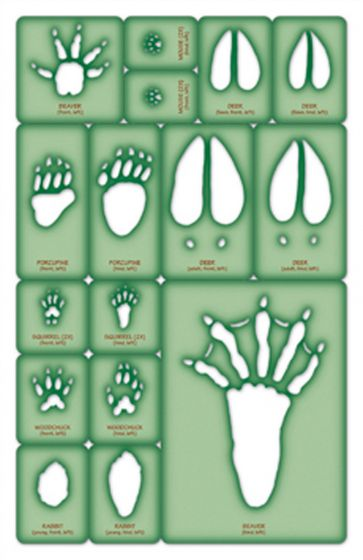 Herbivore Trace-A-Track® Set