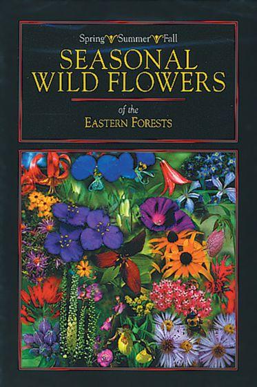 Seasonal Wildflowers Of Eastern Forests (Dvd)