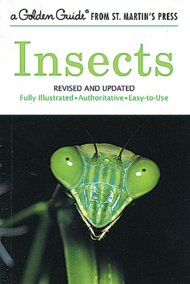 Insects (Golden Guide)
