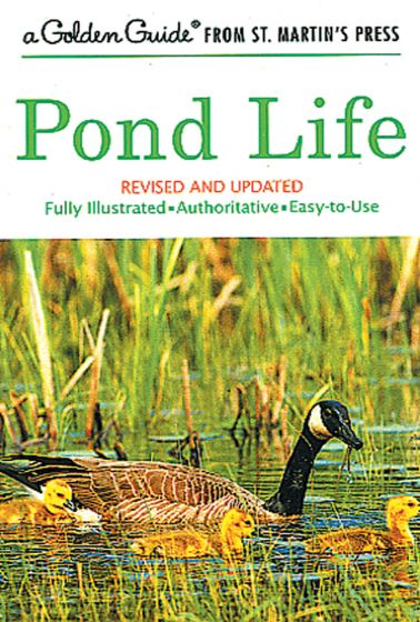 Pond Life (Golden Guide)
