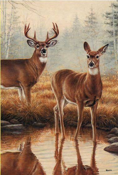 Deer By Stream Large Flag