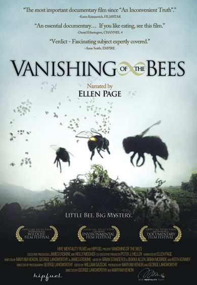 Vanishing Bees Dvd And Study Guide Pdf