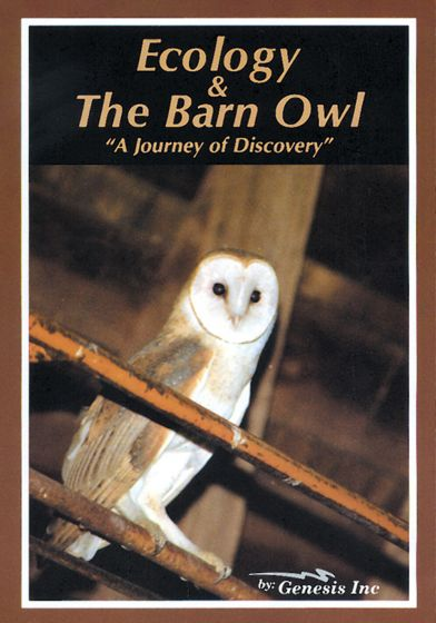 Ecology And The Barn Owl (Dvd)