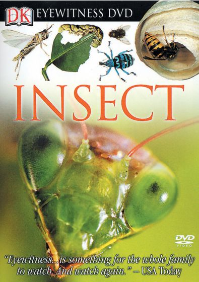 Eyewitness Insect (Dvd)