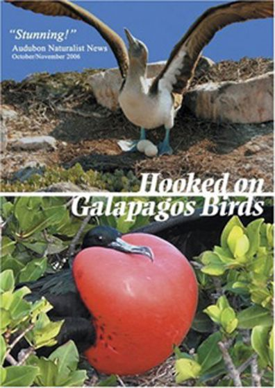Hooked On Galapagos Birds Dvd.