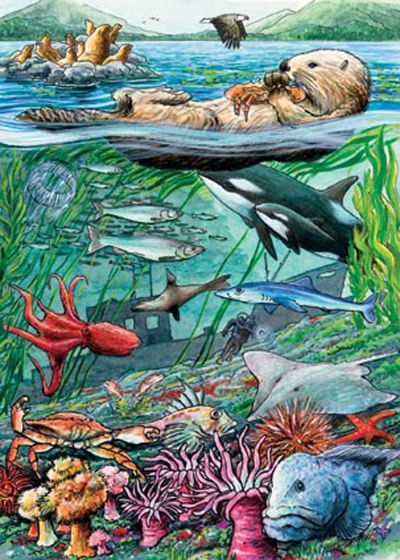 Life On The Pacific Ocean (35 Piece Tray Puzzle)