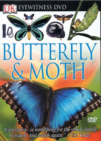Eyewitness Butterfly And Moth (Dvd)