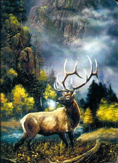 Deer Buck Journal.