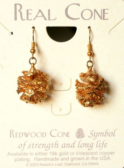 Redwood Cone Gold Earrings (Nature'S Leaf)