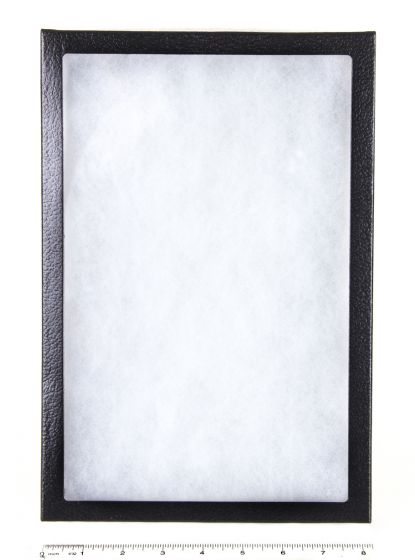 "Extra-Depth Glass-Topped Display Case (8"" X 12"" X 2"")."