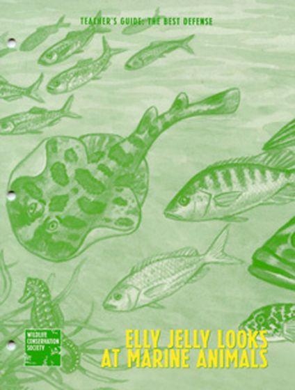Ely Jelly: Best Defense Teacher Guide