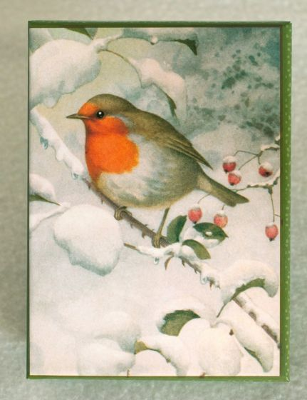 Robin On A Snowy Branch Holiday Boxed Notes