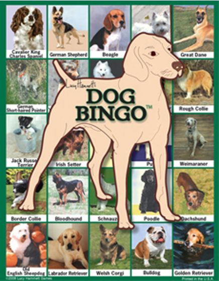 Dog Bingo Game