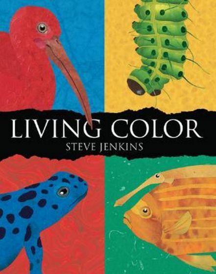 Living Color (Paperback)