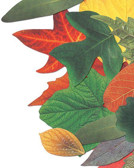 Dye-Cut Leaves