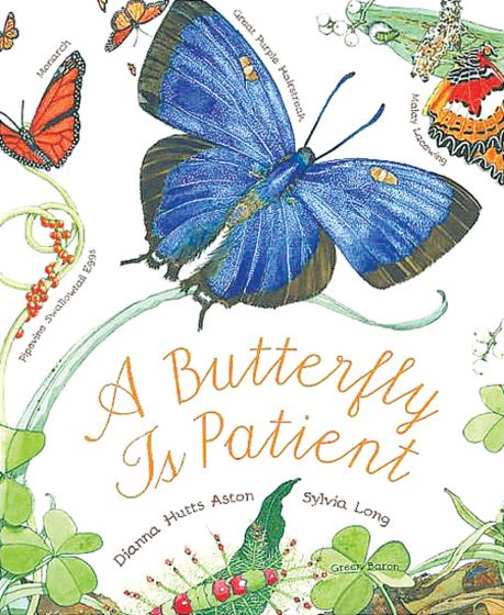 Butterfly Is Patient (A)