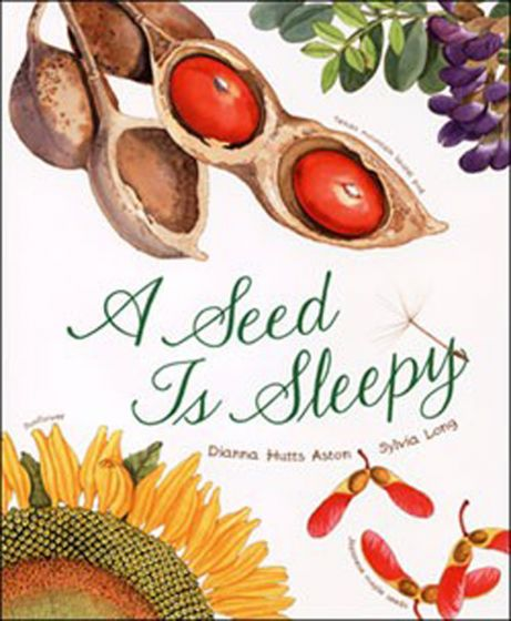 Seed Is Sleepy (A)
