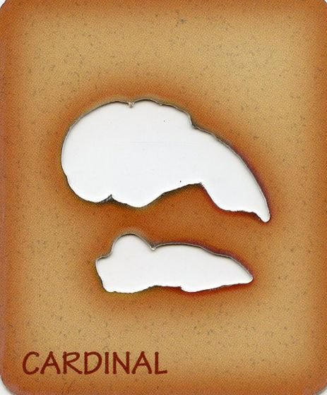 Cardinal Trace-A-Skull® Template.