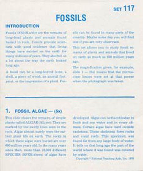 Fossils (Microslide® Lesson Set).