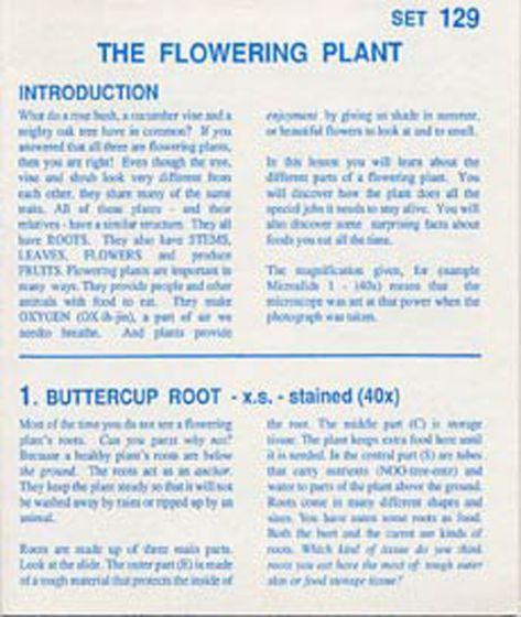 The Flowering Plant (Microslide® Lesson Set)
