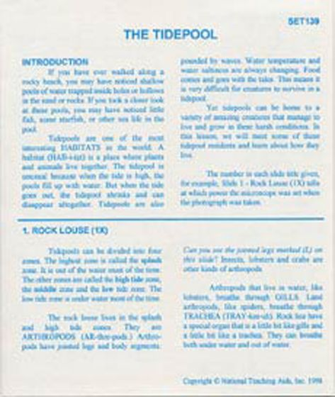 The Tidepool (Microslide® Lesson Set)